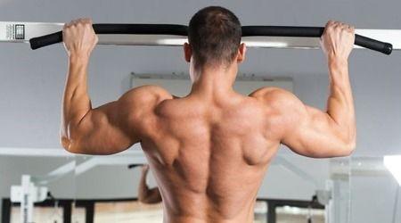 muscoli-dorsali