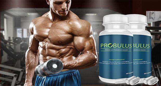 probulus definizione muscolare