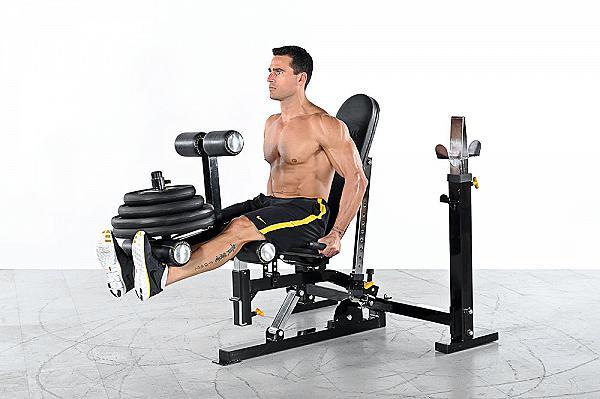 esercizio di leg extension