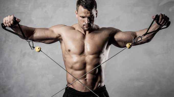 proteine palestra per massa muscolare